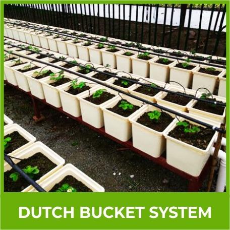 Dutch Bicket System